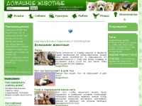 all-about-pets.ru