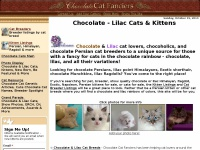 chocolatecats.com