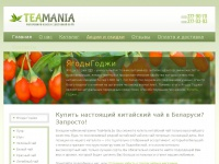 teamania.by