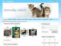 aby-cats.ru