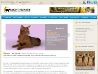 abyssin-cat.ru