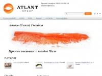 atlant-group.info