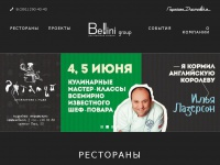bellinigroup.ru Thumbnail