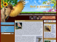 Birds-breed.net