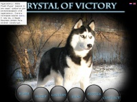 crystal-of-victory.com