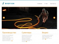 bigfishgroup.ru