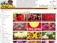 hollandbulb.ru